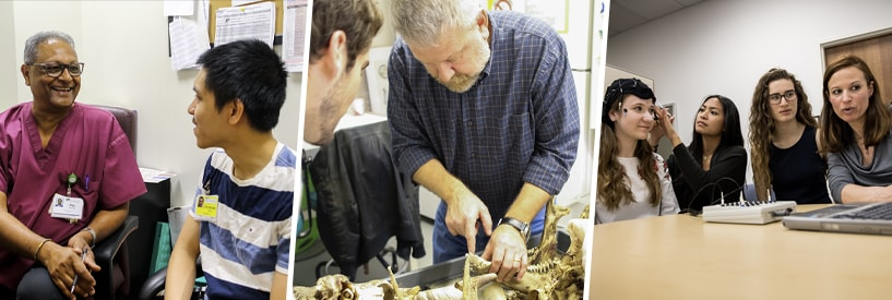 Clinical instructor with student, Professor instructing with animal bones, students and teacher working with analysis equipment made for the head.