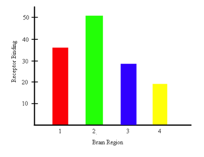 Bar graph representing the amount of receptor binding happening in each brain region