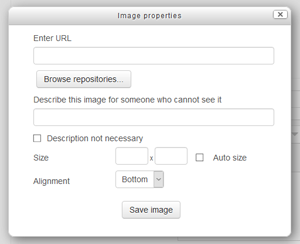 Screenshot of Alt Text Dialog Box in Moodle
