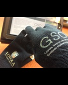 Photo of some super-cool GSO gloves