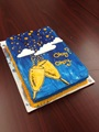 2014 Fault in Our Stars Cake