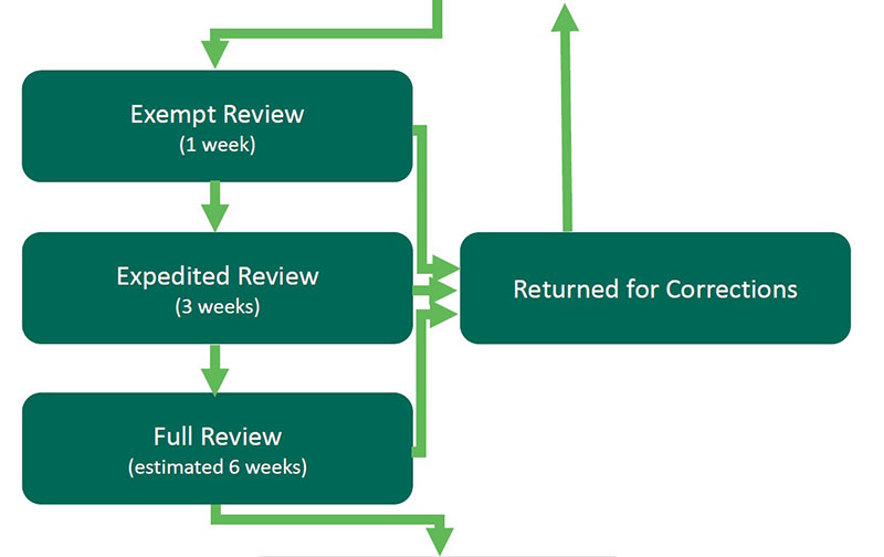 Step 6 Review: Exempt Review, Expedited Review, Full Review, and Returned for Corrections