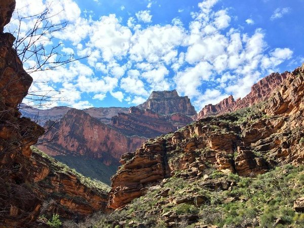 Looking up at the walls of the Grand Canyon from a campsite.