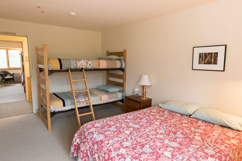 View of mountain aster room with full bed