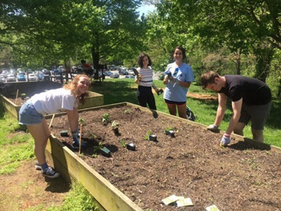 students and staff work in garden during annual planting party