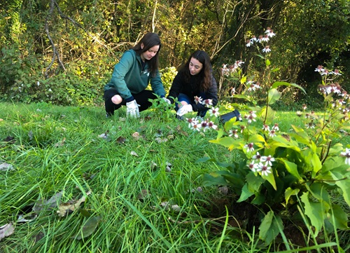 students planting conservation garden