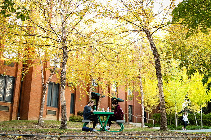 Two students do homework under the changing leaves outside their residence hall.