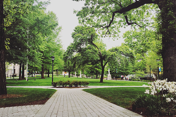 The pathway from the Humanities building opens up to a quad lush with greenery.