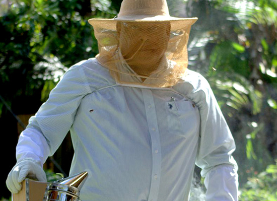 Ual Bradley, Jr. amongst his bees, wearing a beekeeper helmet.