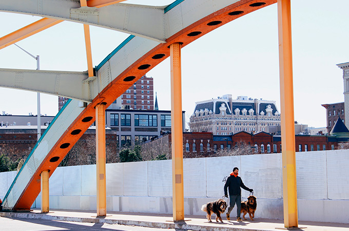 A man and his two dogs walking across a colorful bridge