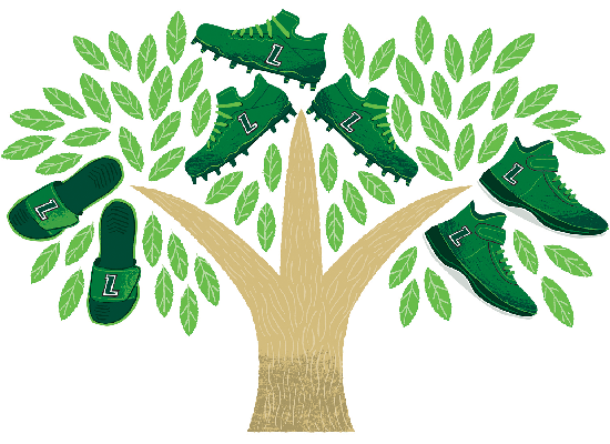 Illustration of Loyola branded athletic shoes growing from a tree