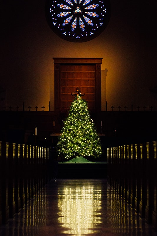 Christmas tree with lights in a chapel with a stained glass window above it