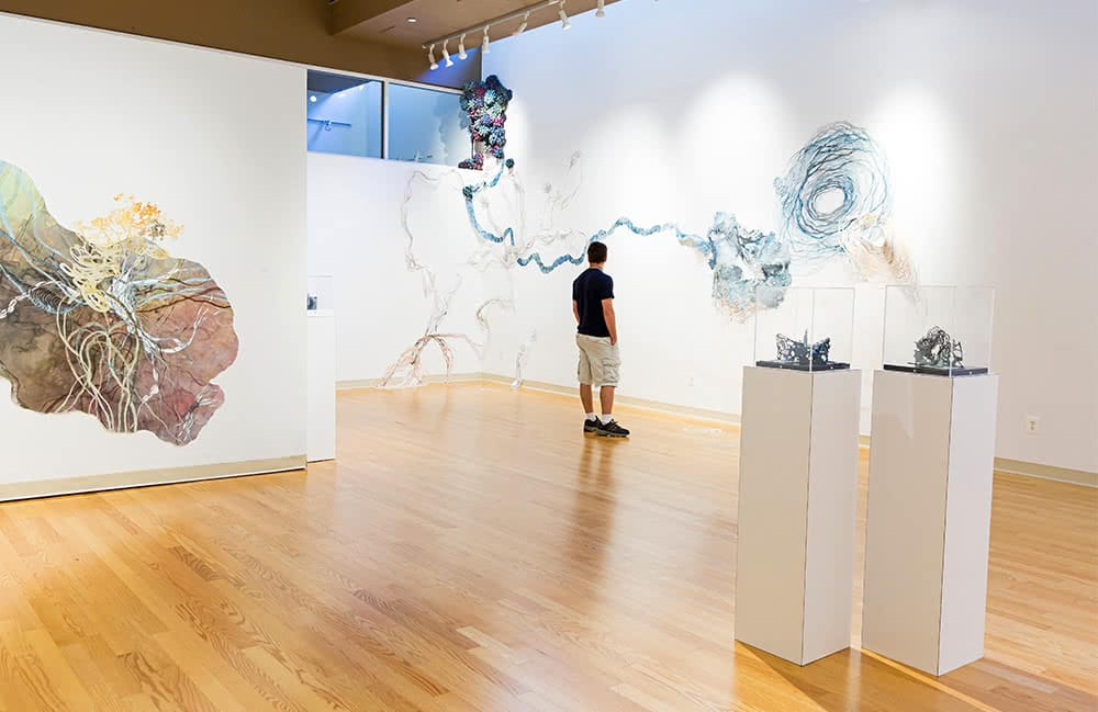 A student looks at art on the wall in the Julio Fine Arts Gallery