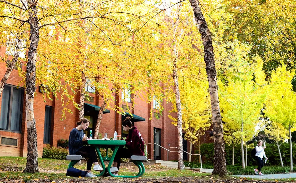 Two students sitting at a picnic bench with red-bricked buildings in the background and trees with yellow fall foliage