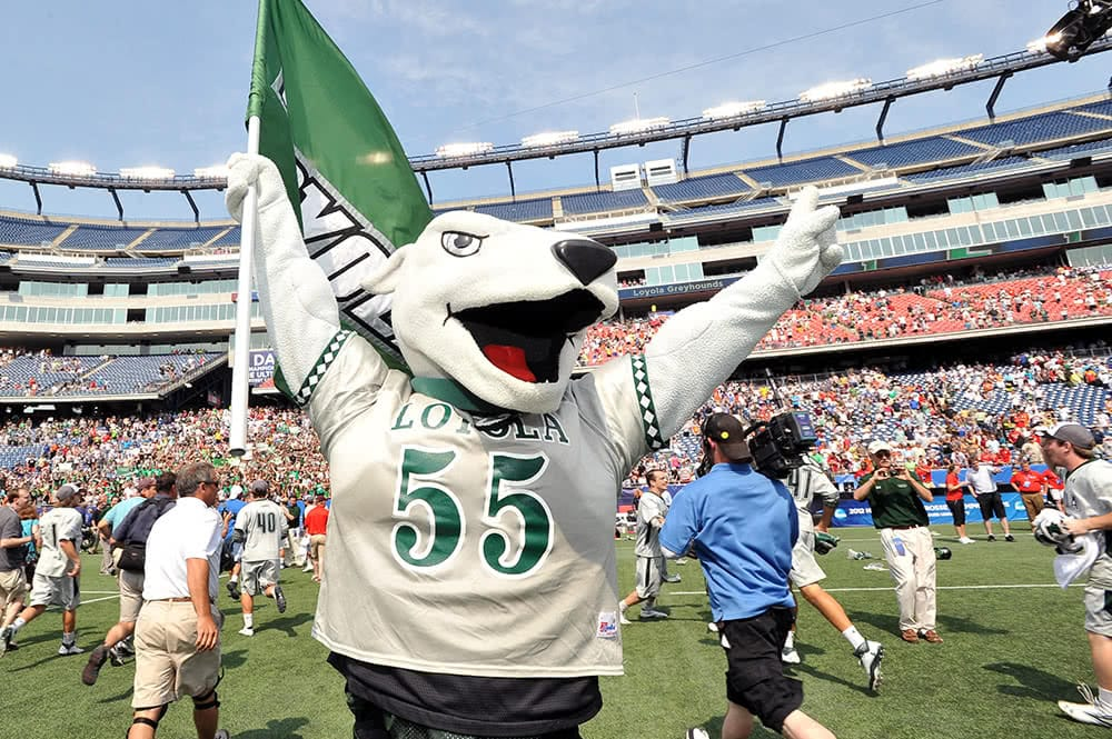 The Loyola Greyhound mascot with its hands in the air, one holding a green Loyola flag
