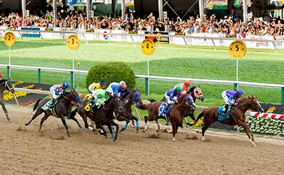 A group of horses and jockeys racing at the Preakness in Baltimore